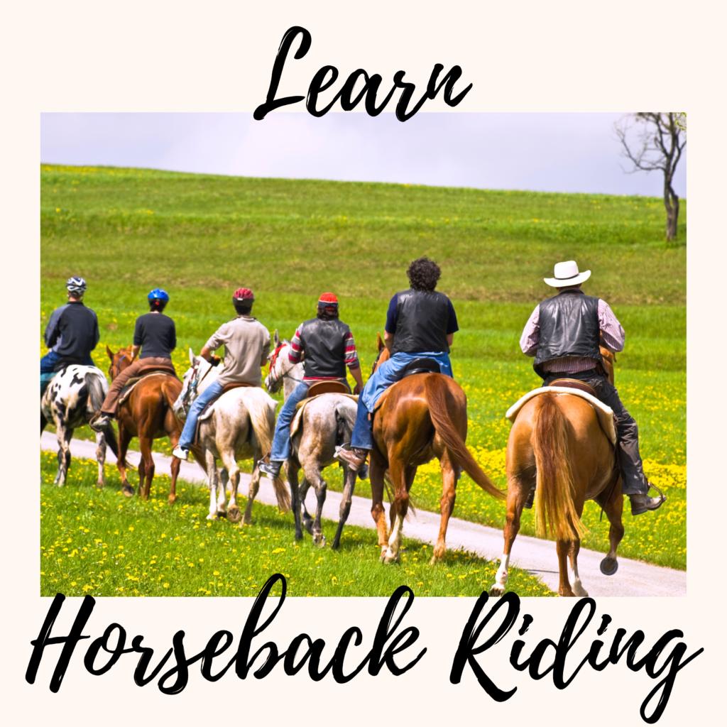 Learn Horseback Riding
